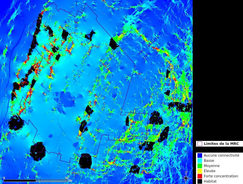 Carte de connectivité forestière